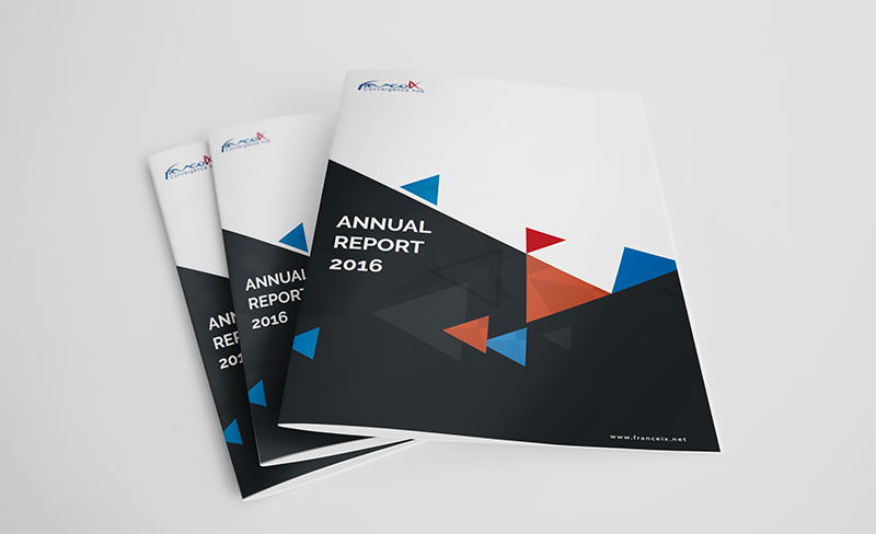 picture of 3 printed annual report