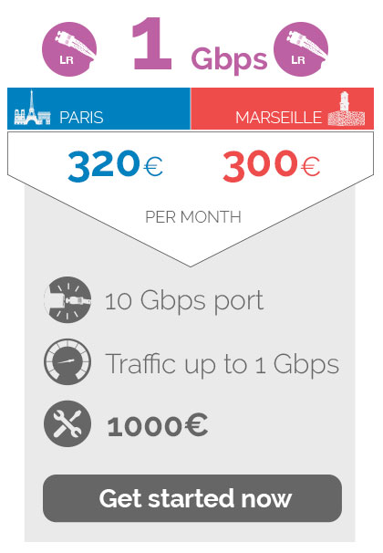 1Gbps 320euros in Paris / 300 euros in Marseille per month,10Gbps port traffic up to  1Gbps, 1000 euros Non recurring fees
